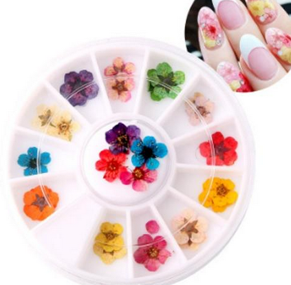 Dry Flower Nail Art Online Store Tpn Networking The Perfume